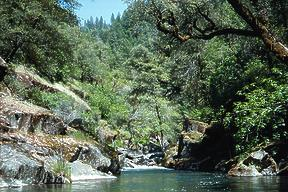 Camp Creek CA