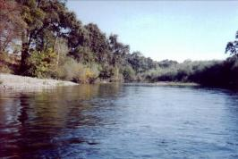 Tuolumne River from La Grage to Waterford CA