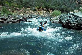 California Creeks - North Fork American Shirttail