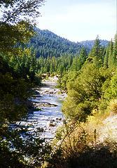 North Fork Yuba below Goodyear Bar